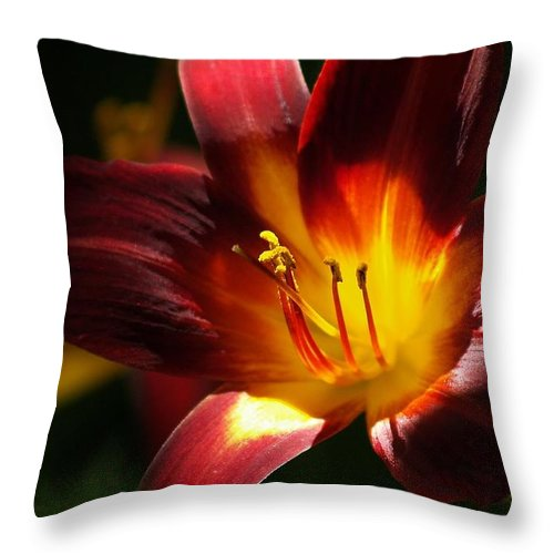 Flower Throw Pillow featuring the photograph Lily's First Light by Denise Irving