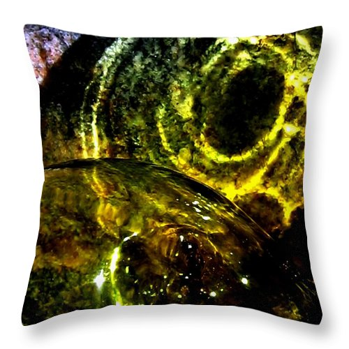 Glass Ball Throw Pillow featuring the photograph Limelight by Will Borden