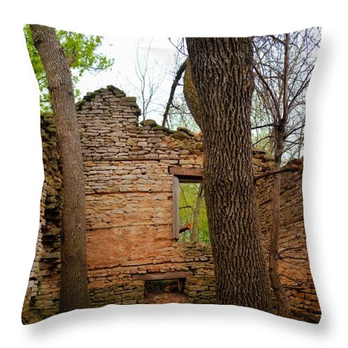 Limestone Throw Pillow featuring the photograph Limestone Relic by Bonfire Photography