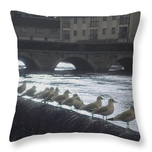 Birds Throw Pillow featuring the photograph Line Of Birds by Tim Nyberg