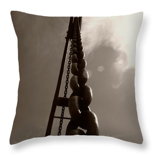 Crane Throw Pillow featuring the photograph Link by Brian Roscorla