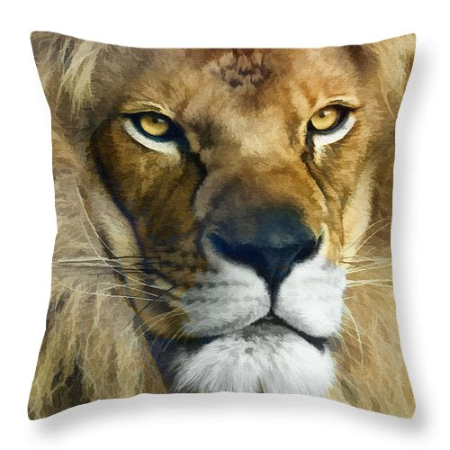 Lion Throw Pillow featuring the photograph Lion Of Judah II by Sharon Foster