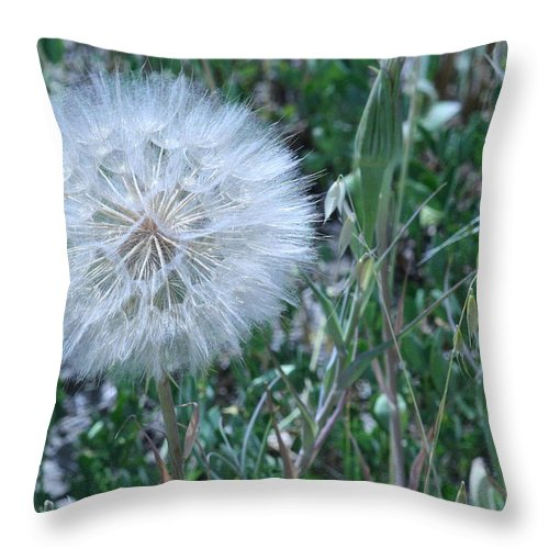 Floral Throw Pillow featuring the photograph Lion's Tooth by Mary Mikawoz