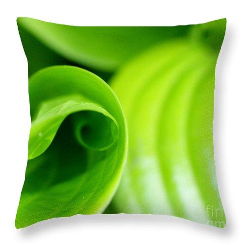 Hosta Throw Pillow featuring the photograph Listen by Valerie Fuqua