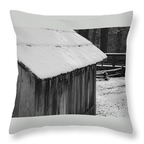 Landscape Throw Pillow featuring the photograph Little Brown Shed by Eric Liller