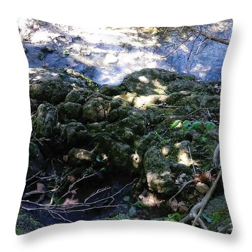 Creek Throw Pillow featuring the photograph Little Creek by Alisha Albin