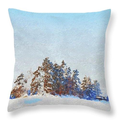 Winter Throw Pillow featuring the photograph Little Forest by Pekka Liukkonen