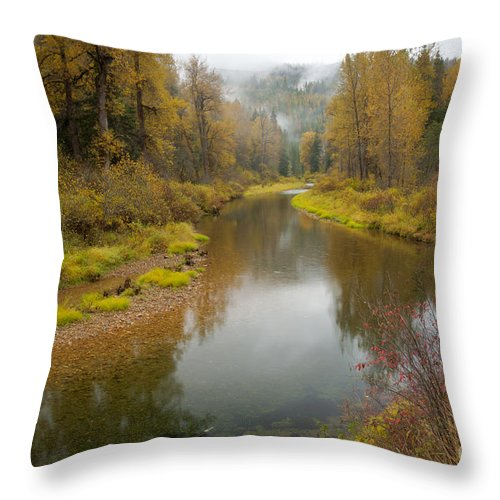 Idaho Throw Pillow featuring the photograph Little North Fork by Idaho Scenic Images Linda Lantzy