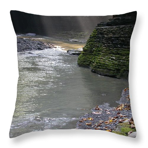 Watkins Glen Throw Pillow featuring the photograph Little Ray Of Sunshine by Linda Murphy