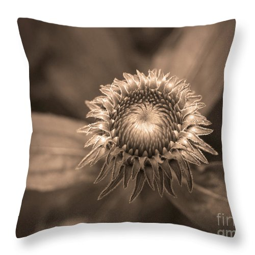 Bud Throw Pillow featuring the photograph Little Things by Tara Turner