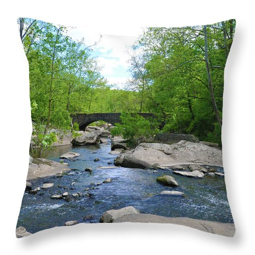 Little Throw Pillow featuring the photograph Little Unami Creek - Pennsylvania by Bill Cannon