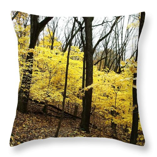 Starved Rock Throw Pillow featuring the photograph Little Yellow Trees by Anna Villarreal Garbis