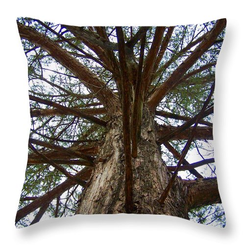Life Throw Pillow featuring the photograph Live Spokes by Nadine Rippelmeyer