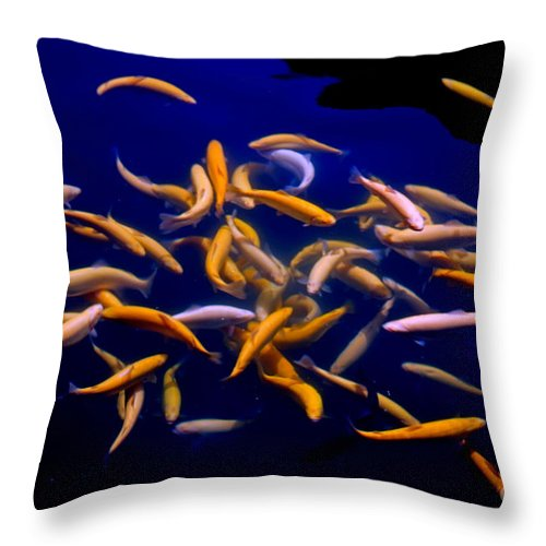 Fish Throw Pillow featuring the photograph Lively Colorful by Leanne Lei