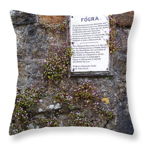 Irish Throw Pillow featuring the photograph Living Wall At Donegal Castle Ireland by Teresa Mucha