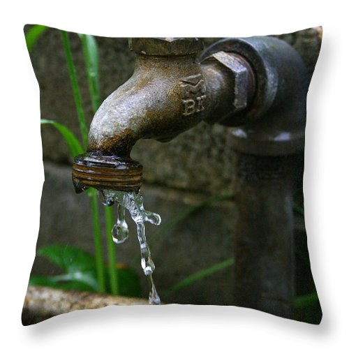 Water Faucet Valve Nature Garden Drop Dripping Red Wet Life Grow Nourish Rural Country Throw Pillow featuring the photograph Living Water by Andrei Shliakhau