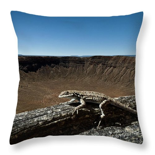 Meteor Crater Throw Pillow featuring the photograph Lizard Crater by Murray Bloom