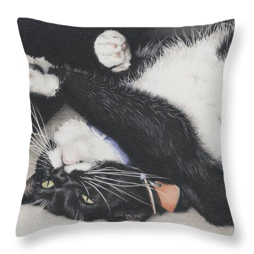 Cat Throw Pillow featuring the drawing Lizzie - Cant Resist The Cuteness by Amy S Turner