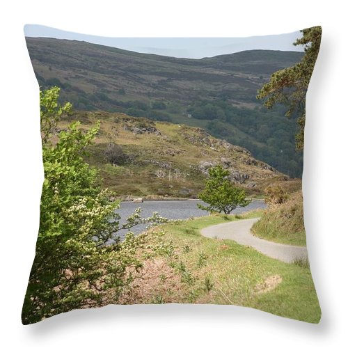 Lakes Throw Pillow featuring the photograph Llyn Gerionedd Lake by Christopher Rowlands