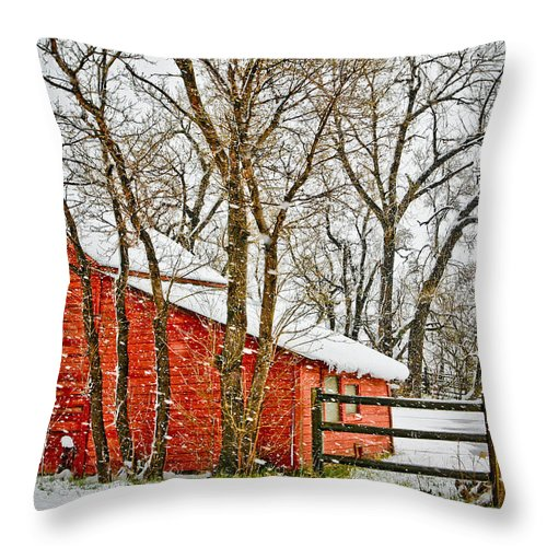 Americana Throw Pillow featuring the photograph Loafing Shed by Marilyn Hunt
