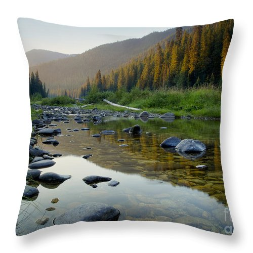 Idaho Throw Pillow featuring the photograph Lochsa Morning by Idaho Scenic Images Linda Lantzy