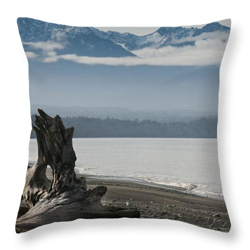 Landscape Throw Pillow featuring the photograph Log Under Clouds by Chad Davis