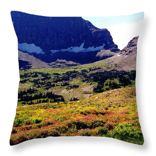 Glacier National Park Throw Pillow featuring the photograph Logans Pass in Glacier National Park by Nancy Mueller
