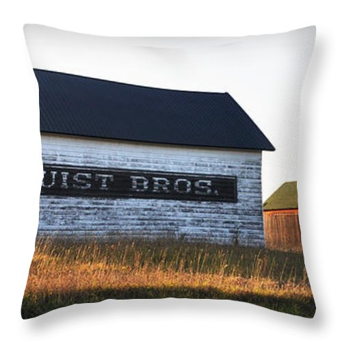 Fall Throw Pillow featuring the photograph Logerquist Bros. by Tim Nyberg