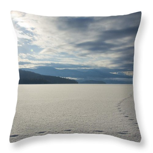 Prints Throw Pillow featuring the photograph Lone Coyote by Idaho Scenic Images Linda Lantzy