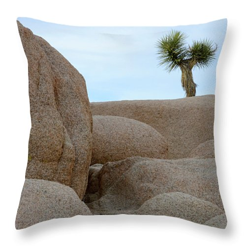 Joshua Tree National Park Throw Pillow featuring the photograph Lone Joshua Tree by Bob Christopher