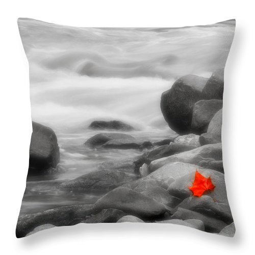 Leaf Throw Pillow featuring the photograph Lone Leaf by Kenneth Krolikowski