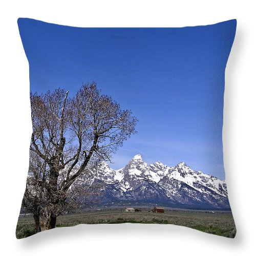 Tree Throw Pillow featuring the photograph Lone Tree At Tetons by Douglas Barnett