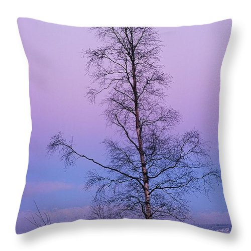 Tree Throw Pillow featuring the photograph Lone Tree At Winter Sunset by Ronnie Glover