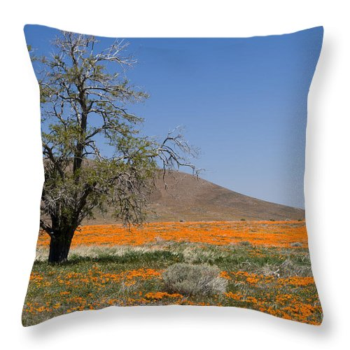 Poppies Throw Pillow featuring the photograph Lone Tree In The Poppies by Sandra Bronstein
