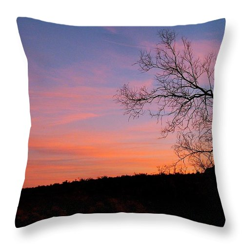 Sunset Throw Pillow featuring the photograph Lone Tree Sunset by Pope McElvy