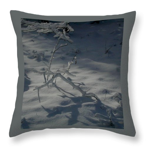 Loneliness Throw Pillow featuring the photograph Loneliness In The Cold by Douglas Barnett