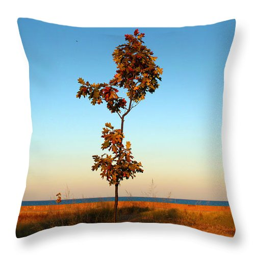 Tree Throw Pillow featuring the photograph Loneliness by Milena Ilieva