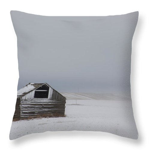 Barn Throw Pillow featuring the photograph Lonely Existence by Idaho Scenic Images Linda Lantzy