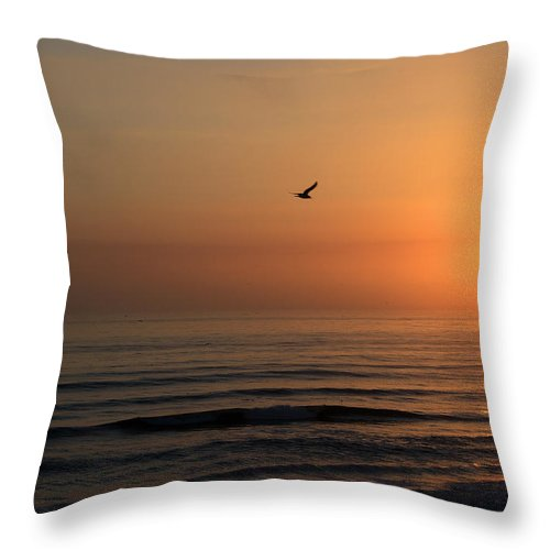 Bird Fly Flight Gull Alone Sun Sunrise Sky Ocean Wave Reflection Nature Golden Gold Throw Pillow featuring the photograph Lonely Flight by Andrei Shliakhau