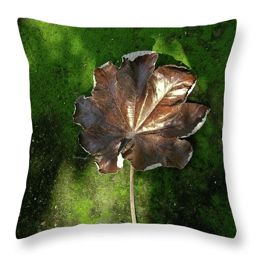 Lonely Throw Pillow featuring the photograph Lonely Leaf On Moss by Douglas Barnett
