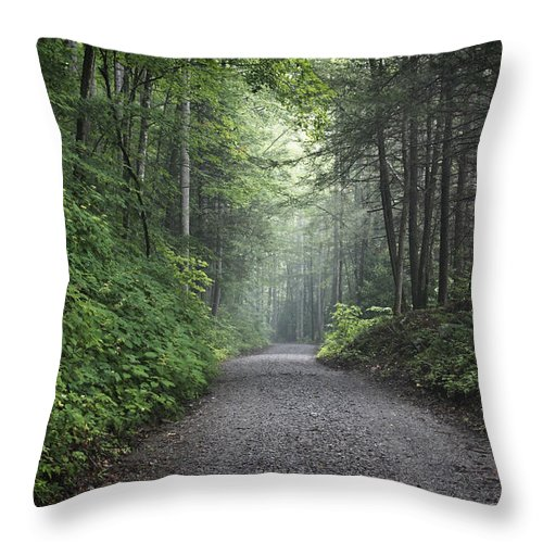 Forest Road Throw Pillow featuring the photograph Lonely Road by Harold Stinnette
