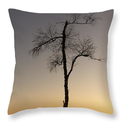 Tree Throw Pillow featuring the photograph Lonely Tree by Are Lund