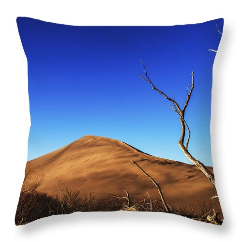 Mountain Home Throw Pillow featuring the photograph Lonely Bare Tree And Sanddunes by Vishwanath Bhat
