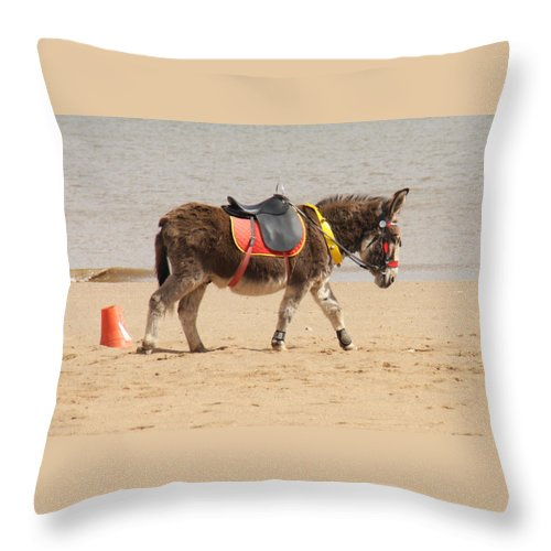 Donkey Walking Along The Beach Alone Throw Pillow featuring the photograph Lonesome Donkey by Gillian Lovett