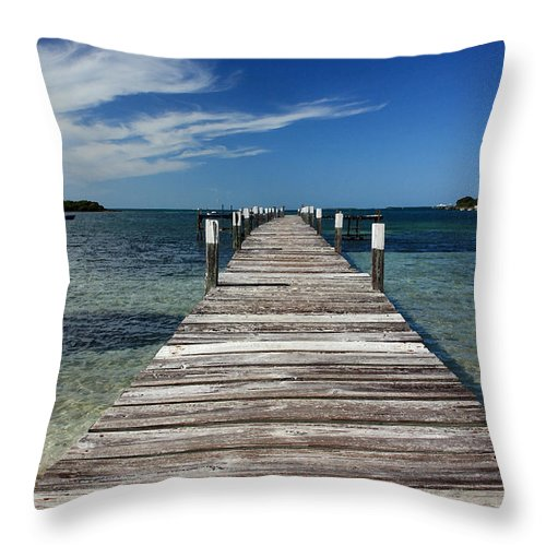 Landscape Throw Pillow featuring the photograph Long Walk by Mary Haber