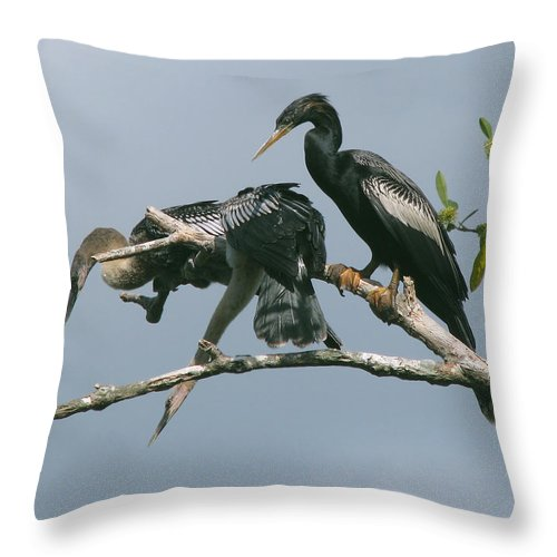 Nature Throw Pillow featuring the photograph Long Way Down by Peg Urban