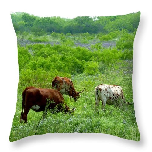 Nature Throw Pillow featuring the photograph Longhorns - Grazing In The Wilds by Lucyna A M Green