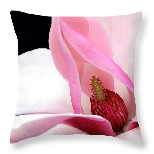 Floral Throw Pillow featuring the photograph Look Inside by Debra Orlean