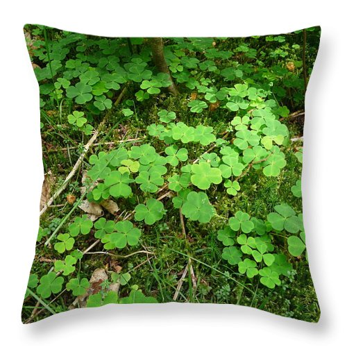 Clover Throw Pillow featuring the photograph Looking For A Four-leaf Clover by Valerie Ornstein