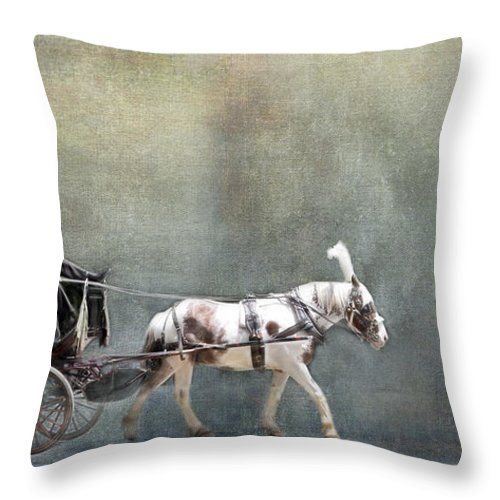 Evie Throw Pillow featuring the photograph Looking For A Princess by Evie Carrier